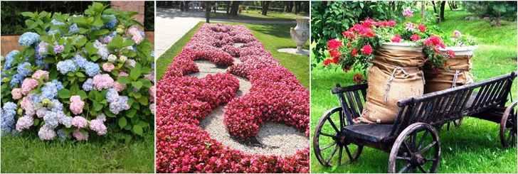 Методы посадки цветов
